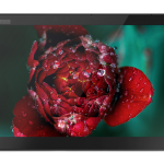 ThinkPad_X1_Tablet_3rd_Gen_CT4_03
